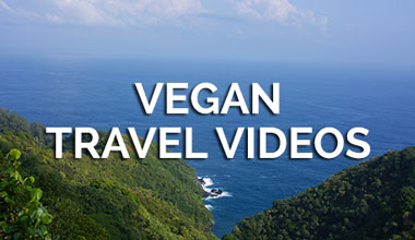 Vegan Travel Videos