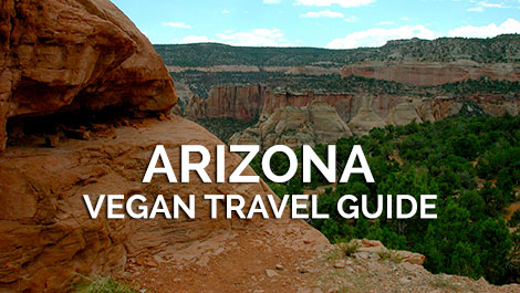 Arizona Vegan Travel Guide