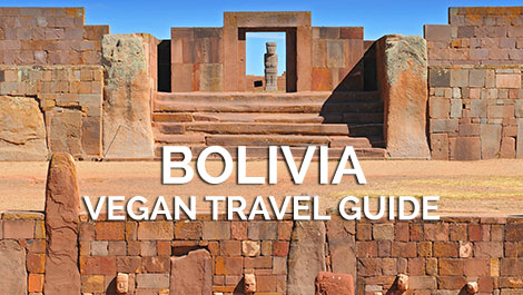 Bolivia Vegan Travel Blogs