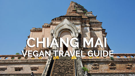 Chiang Mai Vegan Travel Guide