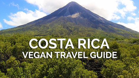 Costa Rica Vegan Travel Guide