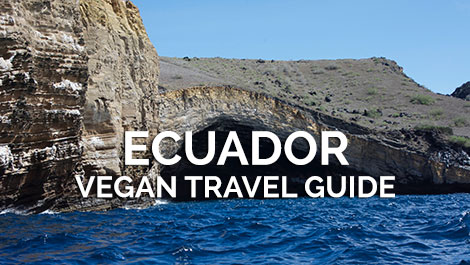 Ecuador Vegan Travel Guide