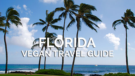 Florida Vegan Travel Guide