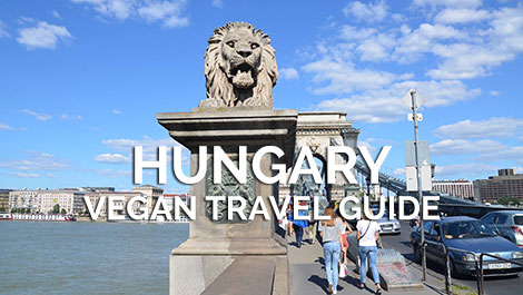 Hungary Vegan Travel Guide