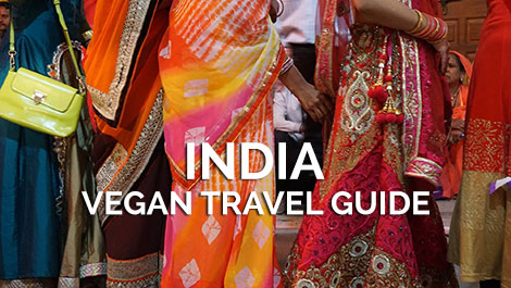 India Vegan Travel Guide