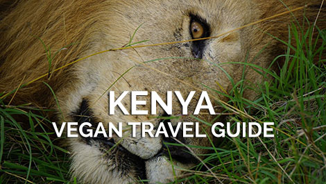 Kenya Vegan Travel Guide