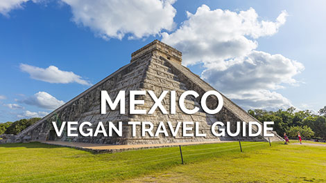 Mexico Vegan Travel Guide