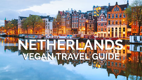Netherlands Vegan Travel Guide