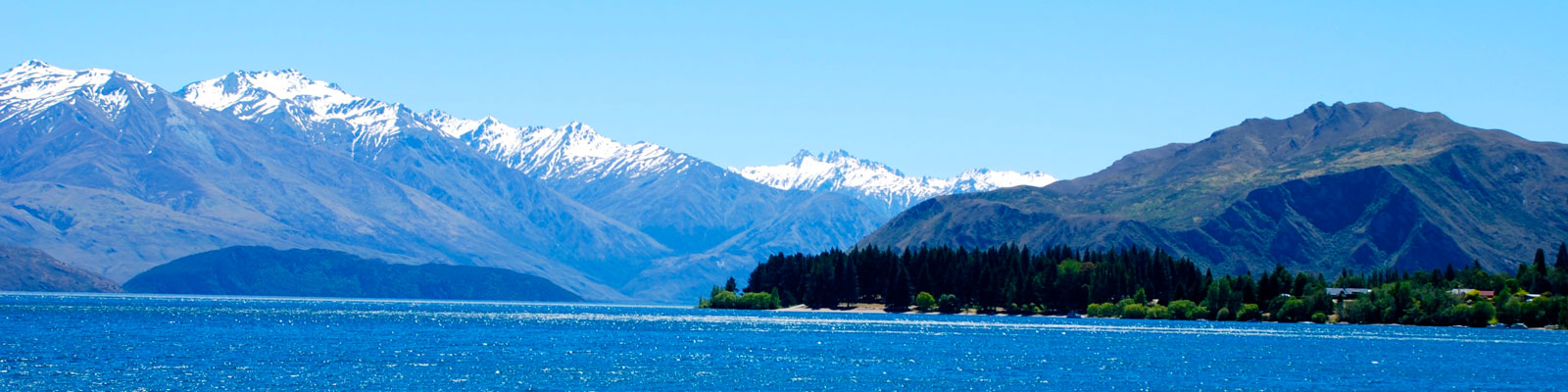 New Zealand Vegan Travel Guide