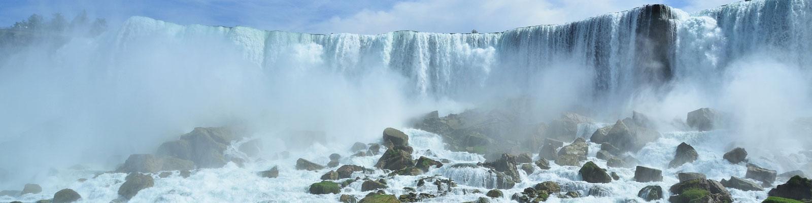North American Vegan Travel Guide