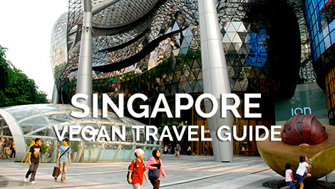 Singapore Vegan Travel Guide