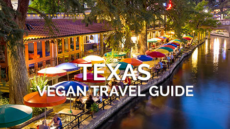 Texas Vegan Travel Guide