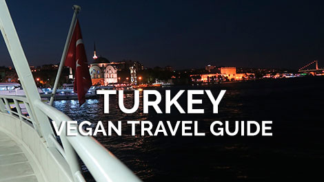 Turkey Vegan Travel Guide