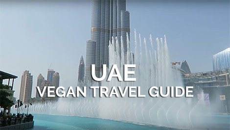 UAE Vegan Travel Guide