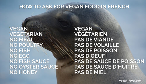 Vegan Travel Translations - French