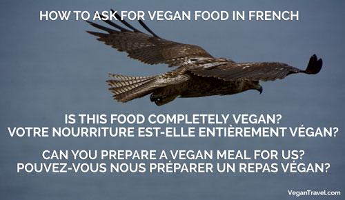 Vegan Travel Translations - French
