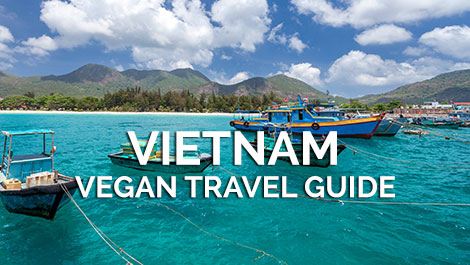 Vietnam Vegan Travel Guide - Blogs & Reviews - VeganTravel.com