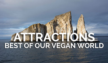 Best Attractions - Vegan Travel