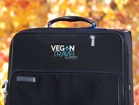 Vegan Travel Carryon Luggage