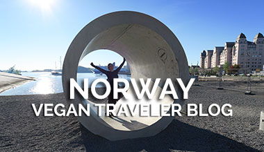 Norway Vegan Traveler Blog