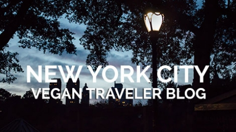 In the City That Never Sleeps (Part 1)