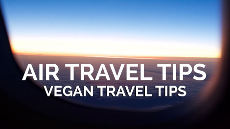 Vegan Air Travel Tips - Vegan Travel