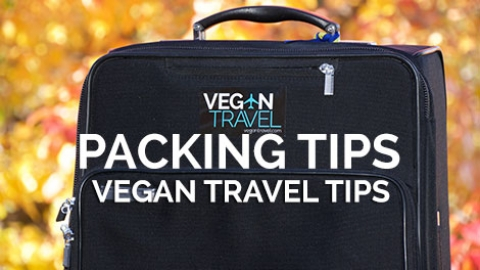 Vegan Packing Tips