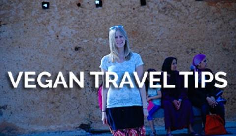 Vegan Traveler Tips
