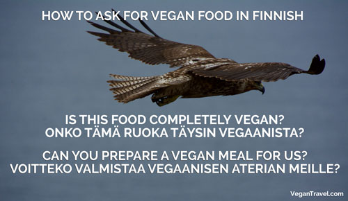 Vegan Travel Translations Finnish
