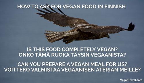 Vegan Travel Translations Finnish