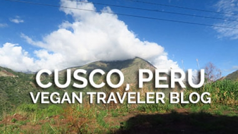 Cusco: A Land of Bread and Chocolate