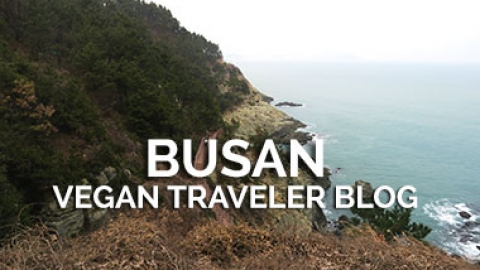 Busan? Big Fan!