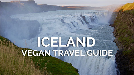 Iceland Vegan Travel Guide