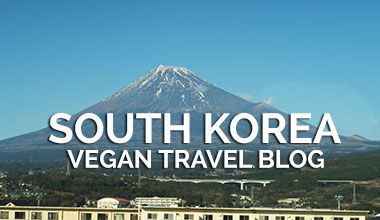 Vegan Traveler Blog - South Korea