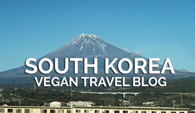 Vegan Traveler Blog - South Korea