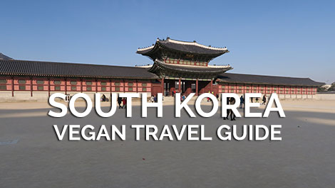 South Korea Vegan Travel Guide