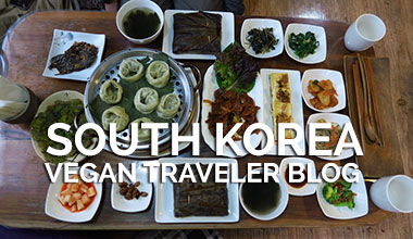 South Korea Vegan Travel Blog
