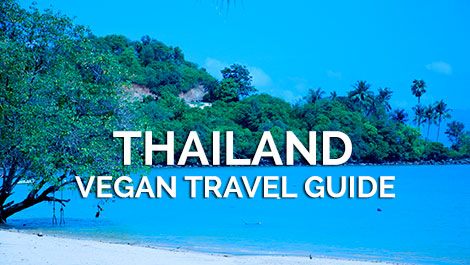Thailand Vegan Travel Guide