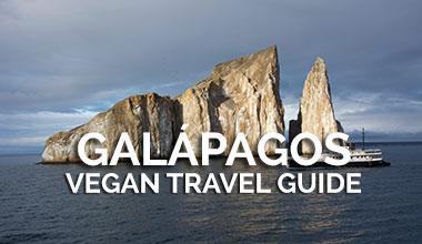 Galapagos Vegan Travel Guide