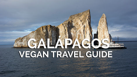 Galapagos Vegan Travel Guide
