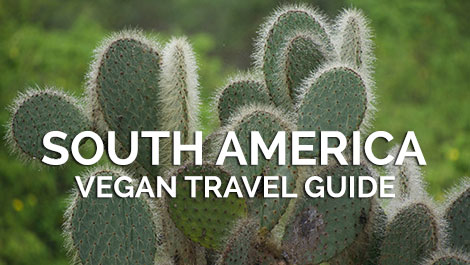 South America Vegan Travel Guides