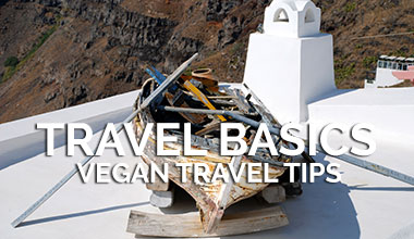 Vegan Travel Basic Tips
