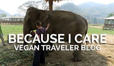 Vegan Travel Blog - Because I Care
