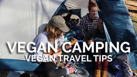 Vegan Camping List and Tips