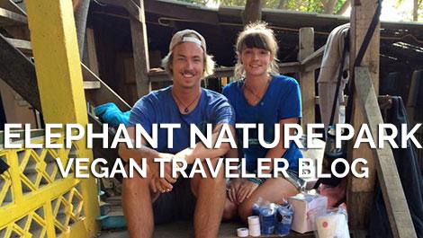 Vegan Traveler Blog - Elephant Nature Park