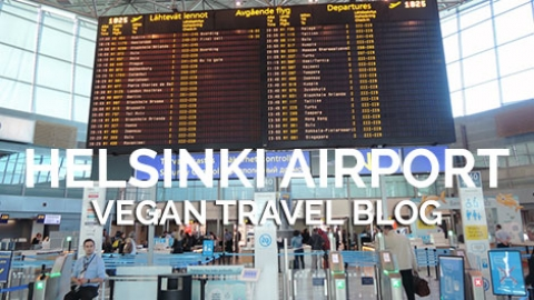 Tips and Vegan Options at Helsinki Airport, pt. 1: Outside the Terminals