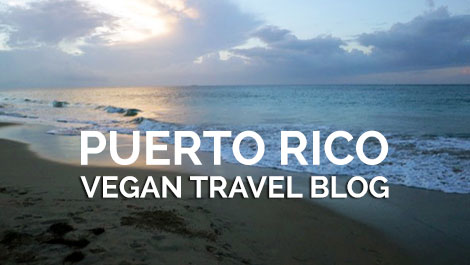 Puerto Rico Vegan Travel Blog - Vegan Travel
