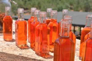 St John's wort infused oil