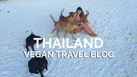 Vegan Traveler Blog - Koh Lipe - Thailand - Vegan Travel