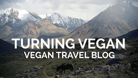 Vegan Traveler Blog - Turning Vegan while Traveling the World